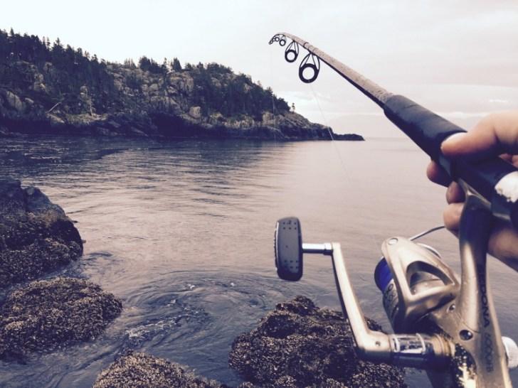 穴釣りロッドは硬めが使いやすい
