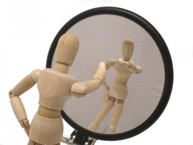 ベタのフレアリングに鏡を使う