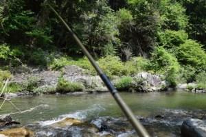 渓流釣りは楽しい