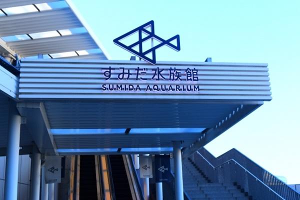すみだ水族館はアクセス良好!
