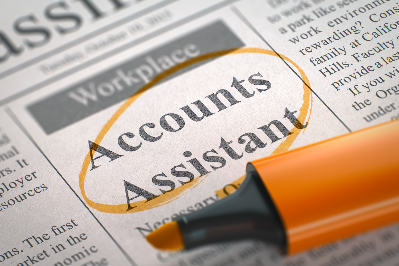 Accounts Assistant Cover Letter Template Career