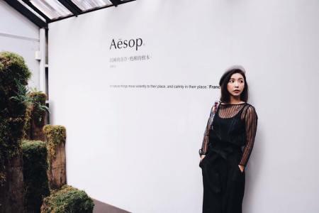 AESOP 展