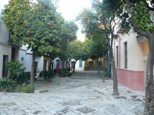 place pleine d'orangers - quartier de Santa Cruz à Séville