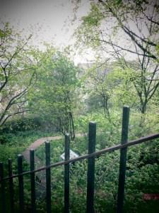 jardin dans Edimbourg