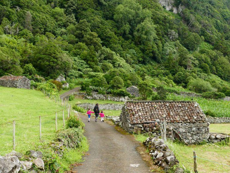 Faja do Conde (Flores - Açores)