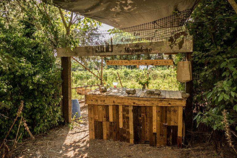 jardin potager sur la presqu'île de Maguelone -Hérault