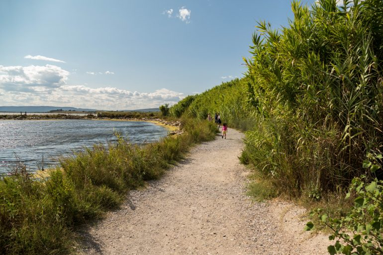 étangs autour de la presqu'île de Maguelone -Hérault
