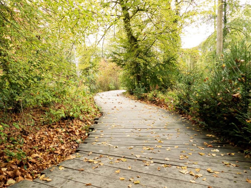 sentier dans le parc du clos lucé