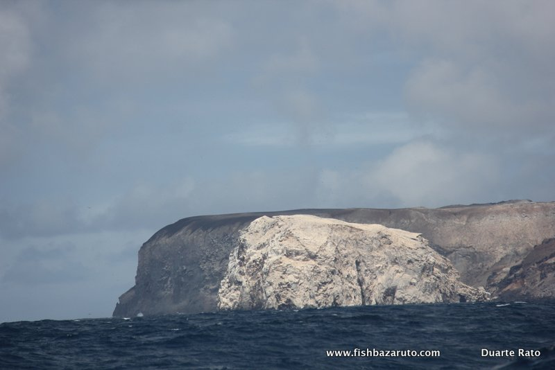 ASCENSION ISLAND – Fishing report (part 1)