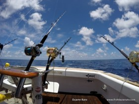 Heavy tackle to help subdue wild angry fish fast but safe