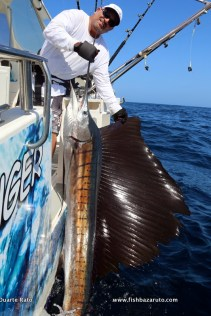 Dave Tucker with his first ever Indo-Pacific sailfish. On the same day he also released his first ever Black Marlin.