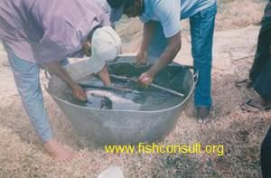 SriLanka - farmer training (01)