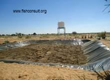 Desert aquaculture in Sudan Pond preparation (03)