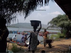 Women in fish processing in Ghana (01)