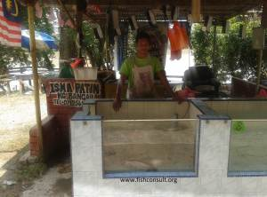 Pangasius display in Malaysia (01)