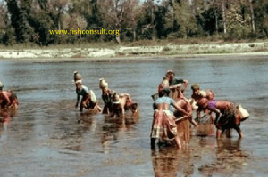 Nepali women in fish catch