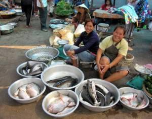 Fish market in Laos