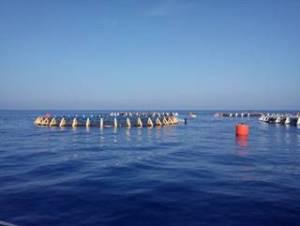 marine-cages-in-algeria