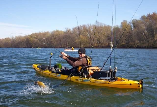 reels for kayak