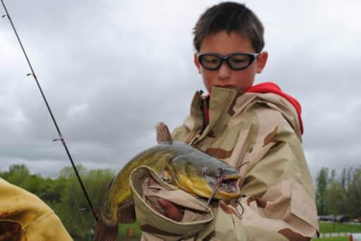 catfish reels