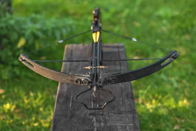 Which is better for survival crossbow or bow