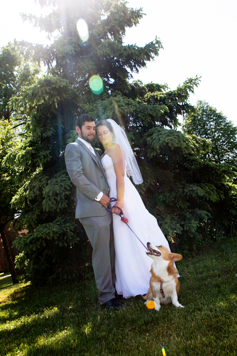 bride and groom fci photography dogs of buffalo