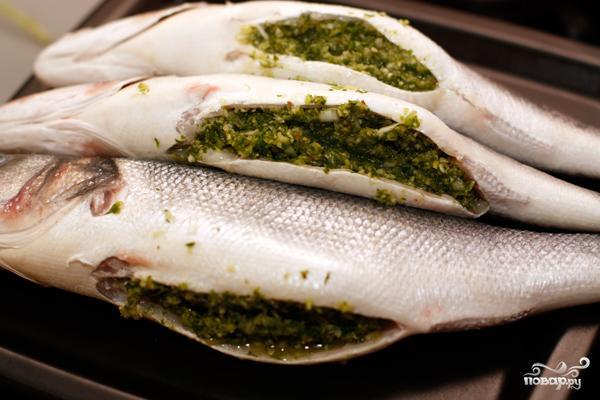 Рыба сибас фото и описание. Кулинарные и вкусовые качества рыбы. Сибас полезные свойства и колорийность, а также вы узнаете, где водится рыба сибас
