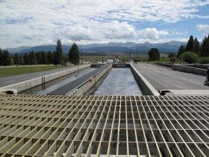 Leadville_National_Fish_Hatchery-300x225