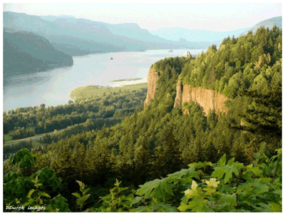Columbia River Gorge near Portland, Oregon. Credit:  Bonneville Power Administration and Darwin Durek Images