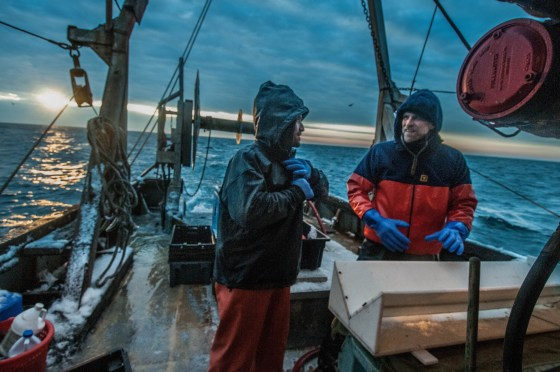 Collaborative is the new cooperative: Chris McGuire from The Nature Conservancy (right) and Jeff Kneebone from the Massachusetts Division of Marine Fisheries (left) working in collaboration with commercial fishermen to acoustically tag winter-spawning cod in the Gulf of Maine.
