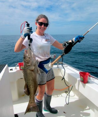 Gag grouper. Photo credit: FWC Fish and Wildlife Research Institute.
