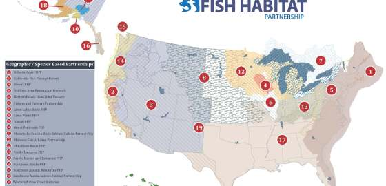 Map of NFHP partnerships.