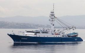 BREXIT BONANZA FOR FISHERIES