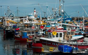 Call for fishing fleet to shed light on state of the industry