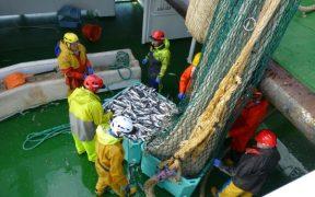 Scotland's mackerel and herring fishermen
