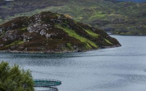 Aquaculture Industry Engagement Fund