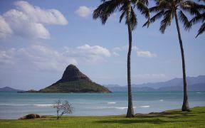 Hawaii Aquaculture Boost