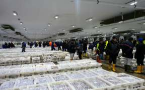 UK FISHERS WELCOME STRENGTHENING OF FISHERIES BILL