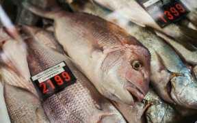 SEAFOOD INDUSTRY AUSTRALIA CALLS CRISIS TALKS