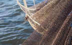 SUSTAINABLE SEAS REPORT