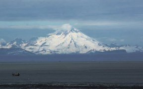 UPPER COOK INLET KING SALMON FISHERY CLOSED