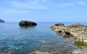 Ocean Mud is Crucial to Carbon Storage