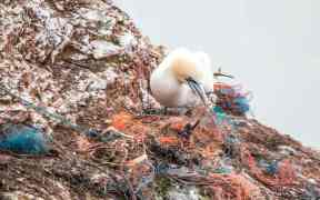 SCHEME TO MINIMISE FISHING GEAR PLASTIC POLLUTION