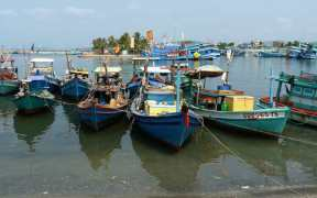 FISHERY PROJECTS GET GO AHEAD IN VIETNAM