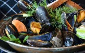 GRANTS AWARDED TO IRISH SEAFOOD ENTERPRISES