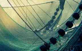 MORE FISHING VESSELS CHASING FEWER FISH