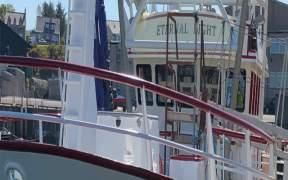 WHITELINK SEAFOODS