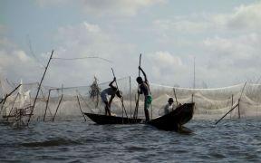 EU AND GUINEA BISSAU