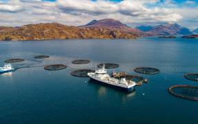 SHIELDAIG FISH FARM DEVELOPER CLAIMS