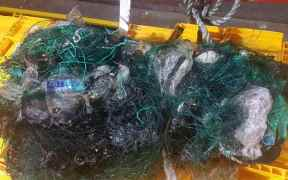 SKIPPERS CALL FOR TOUGHER CONTROLS